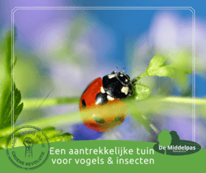 Middelpas Hoveniers - Meer insecten in mijn tuin