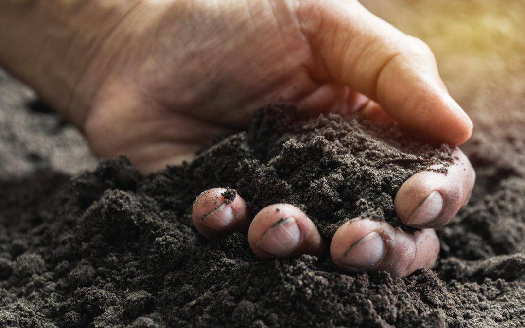 Strooigoed voor uw tuin!