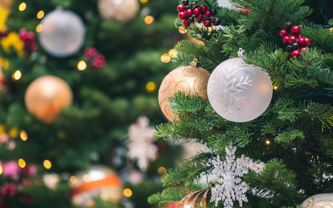 Haal een kerstboom in huis!