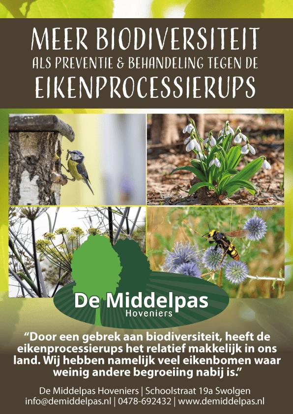 Processierups - Middelpas Hovenier 1